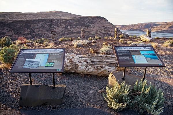 Ginkgo Petrified Forest interpretive sign