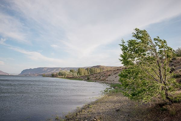 Wanapum Recreation Area waterfront