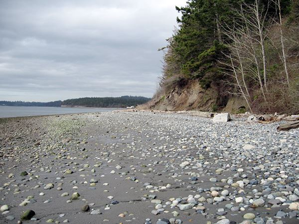 Kinney Point coastline 2
