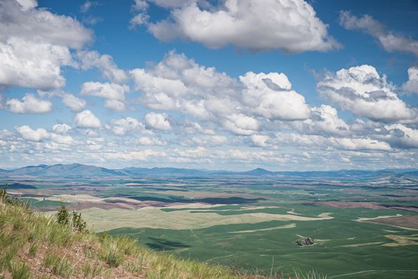 Steptoe Butte view of surrounding area