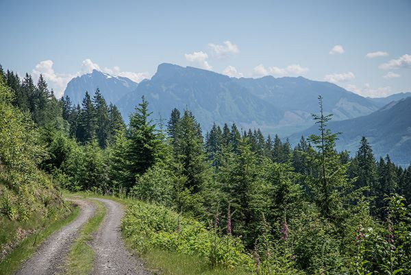 Wallace Falls road and mountains