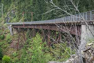 View of trestle over gorge with trees