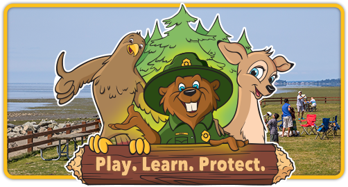 Play Learn Protect