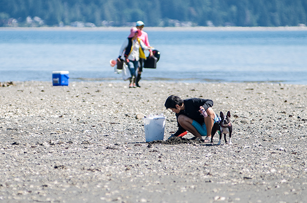 Dosewallips dog with person clamming