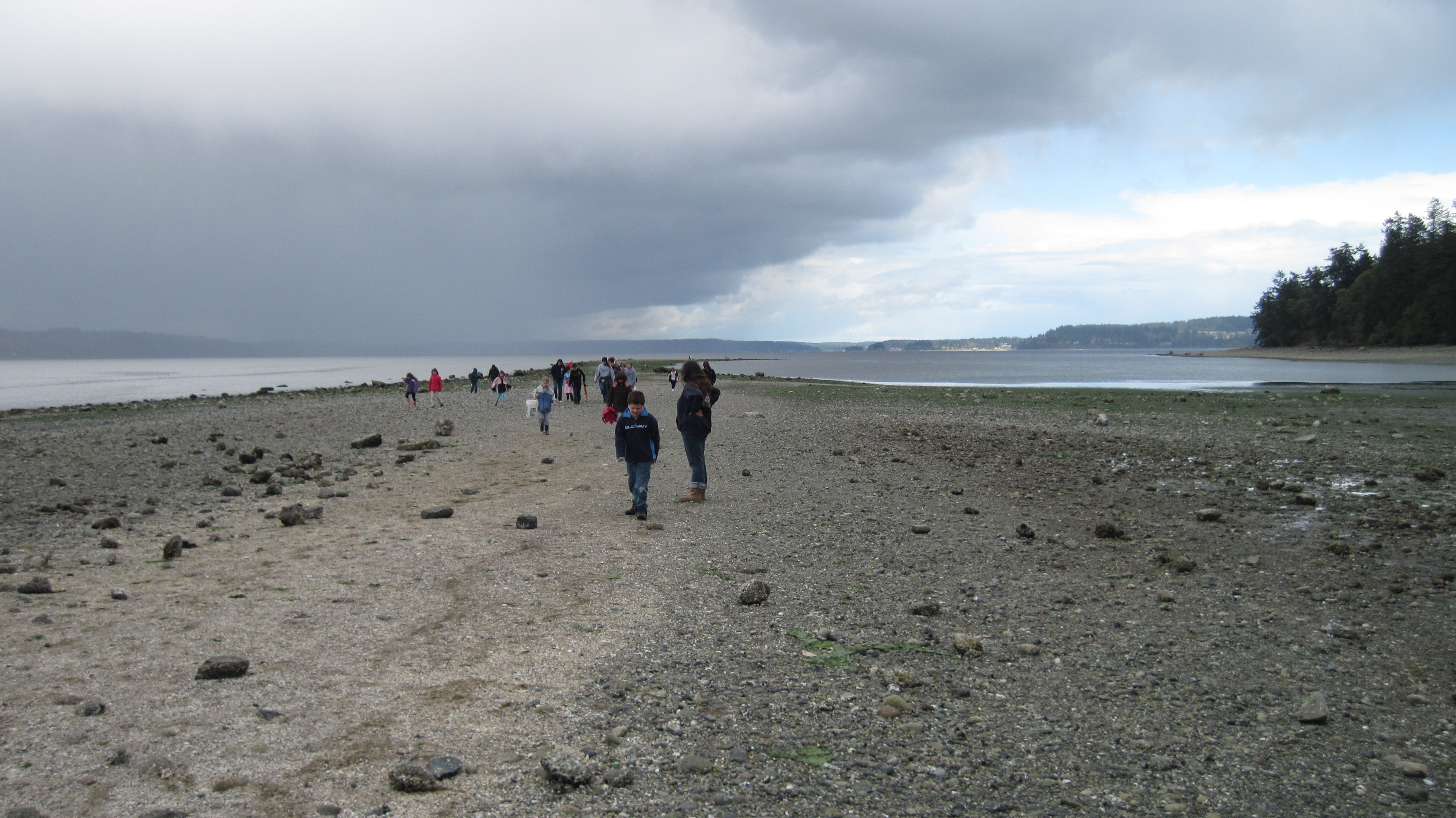 Penrose Point - people walking on beach