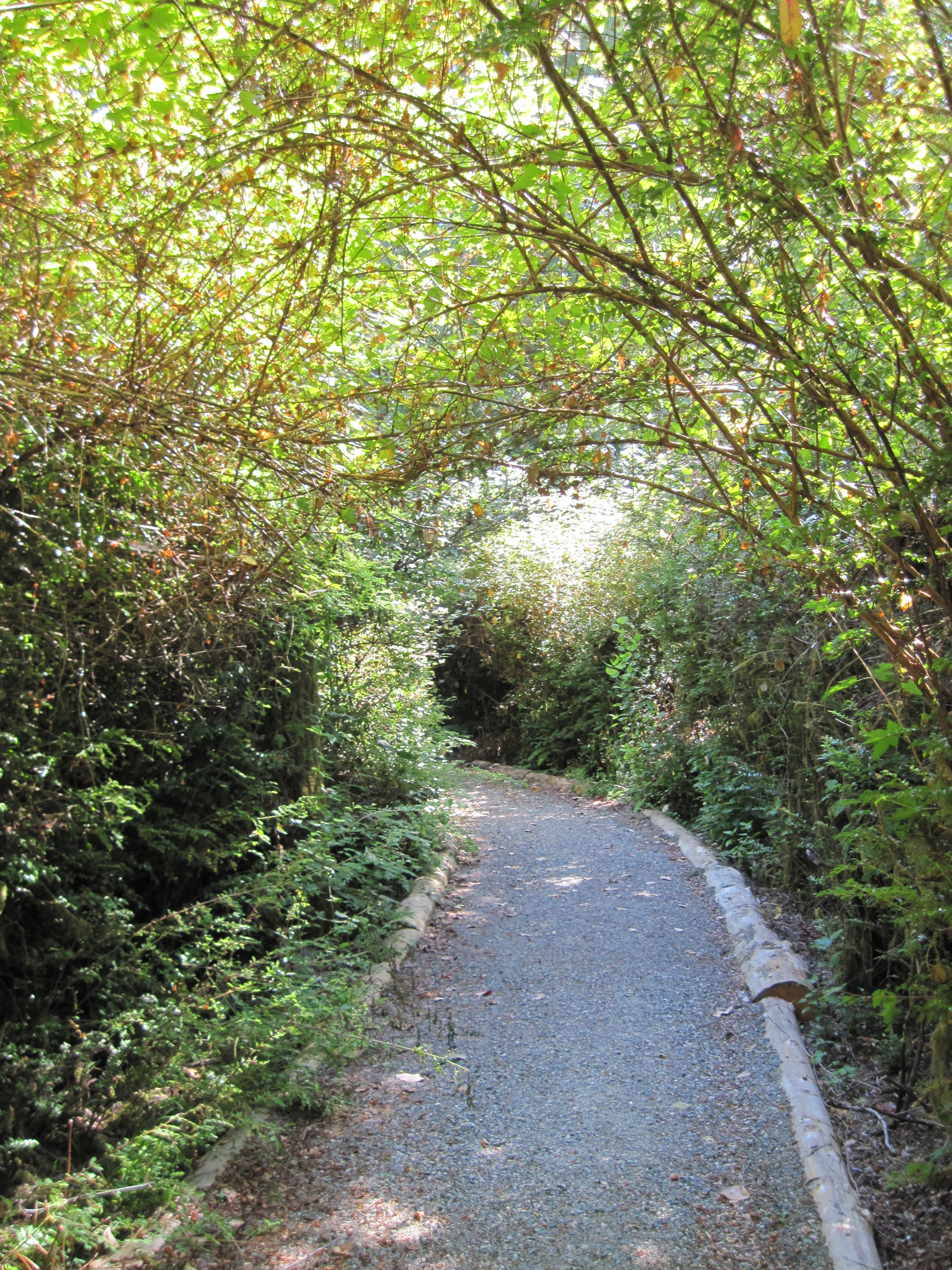 Penrose Point path