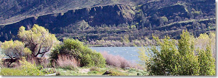 View of the Columbia River as seen from alongside the river