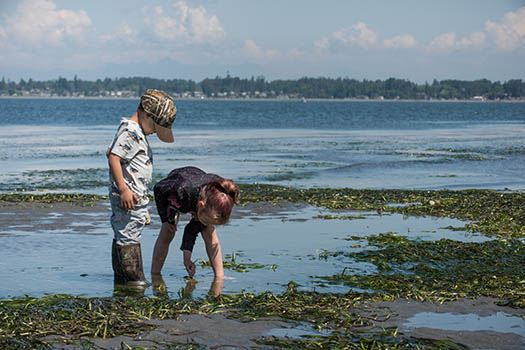 Children playing on shore