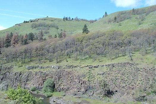 Photo of Klickitat Trail