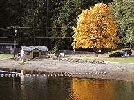 Reflections of autumn tree and bathhouse on Lake Sylvia