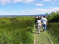 Visitors and ranger walking down trail under blue sky