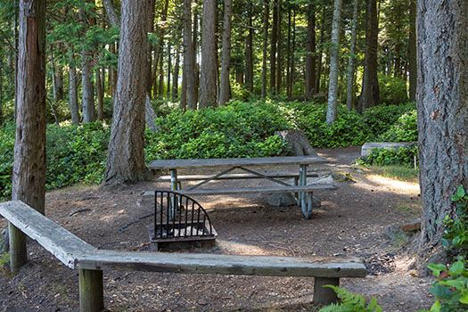 Obstruction Pass picnic site