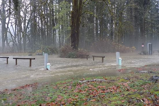 Image of flooding from Satsop River in campground at Schafer State Park.