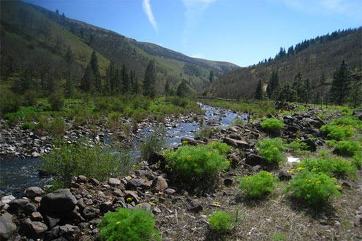 Photo of Klickitat Trail - Swale Canyon Hike